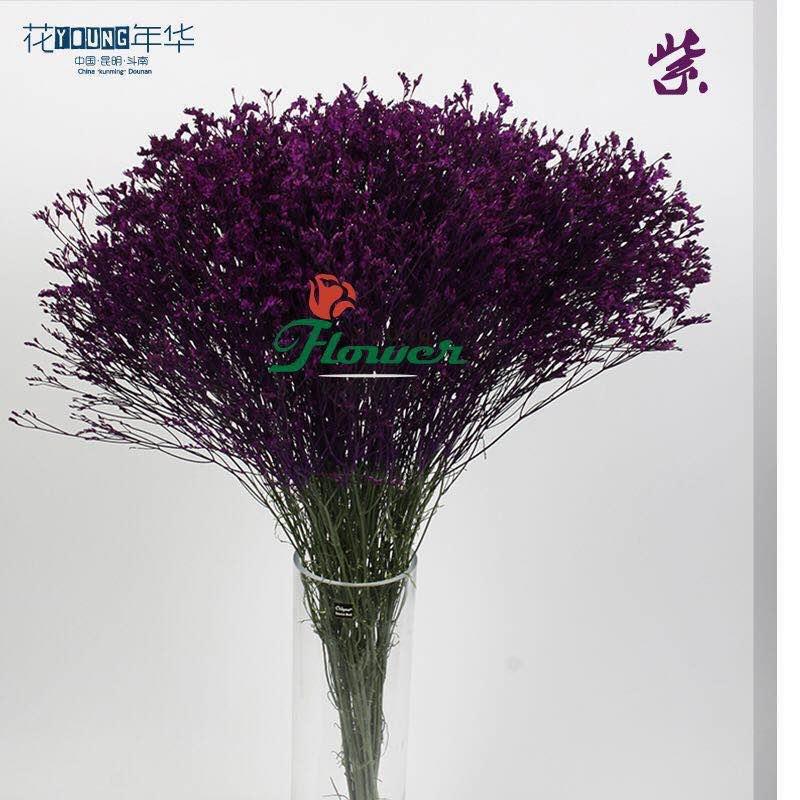 紫色水晶草