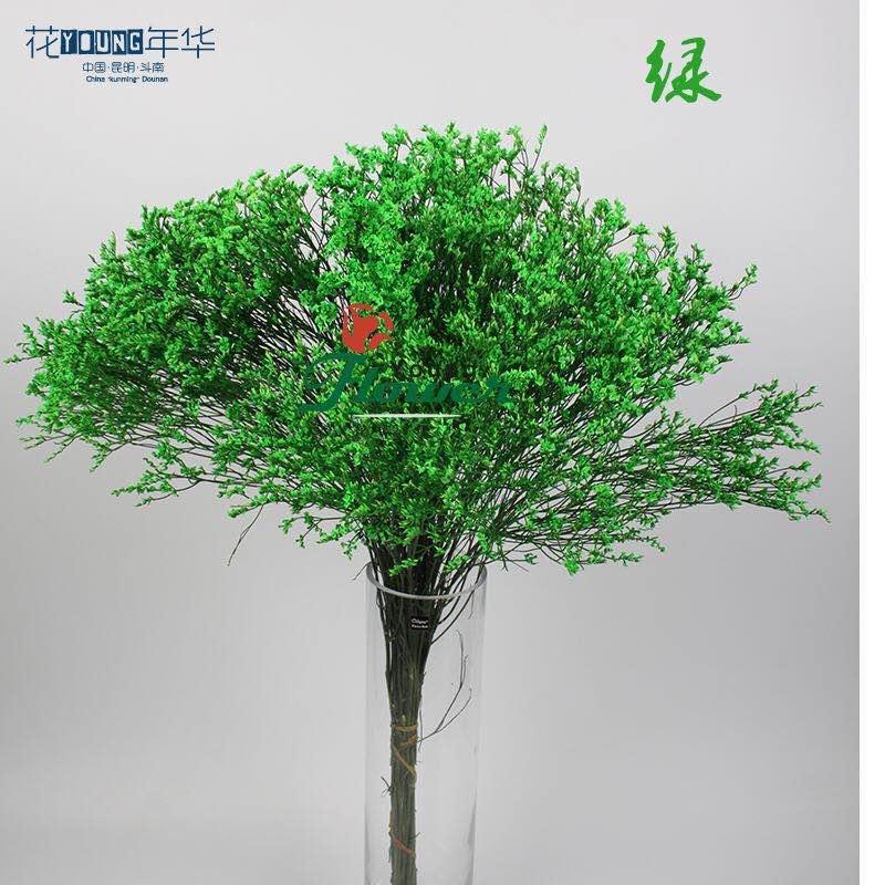 绿色水晶草